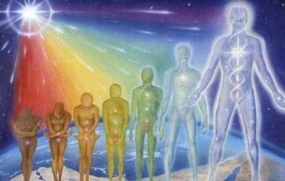 Об эволюции человека