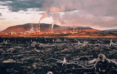 Энергетическая экология