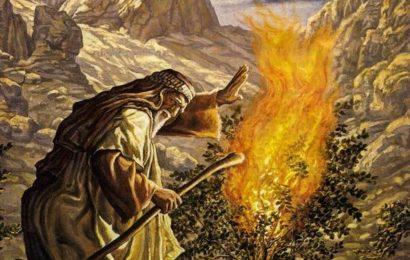 О множестве пророков